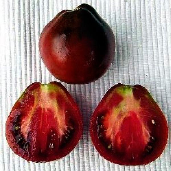 Fekete Cirneta paradicsom