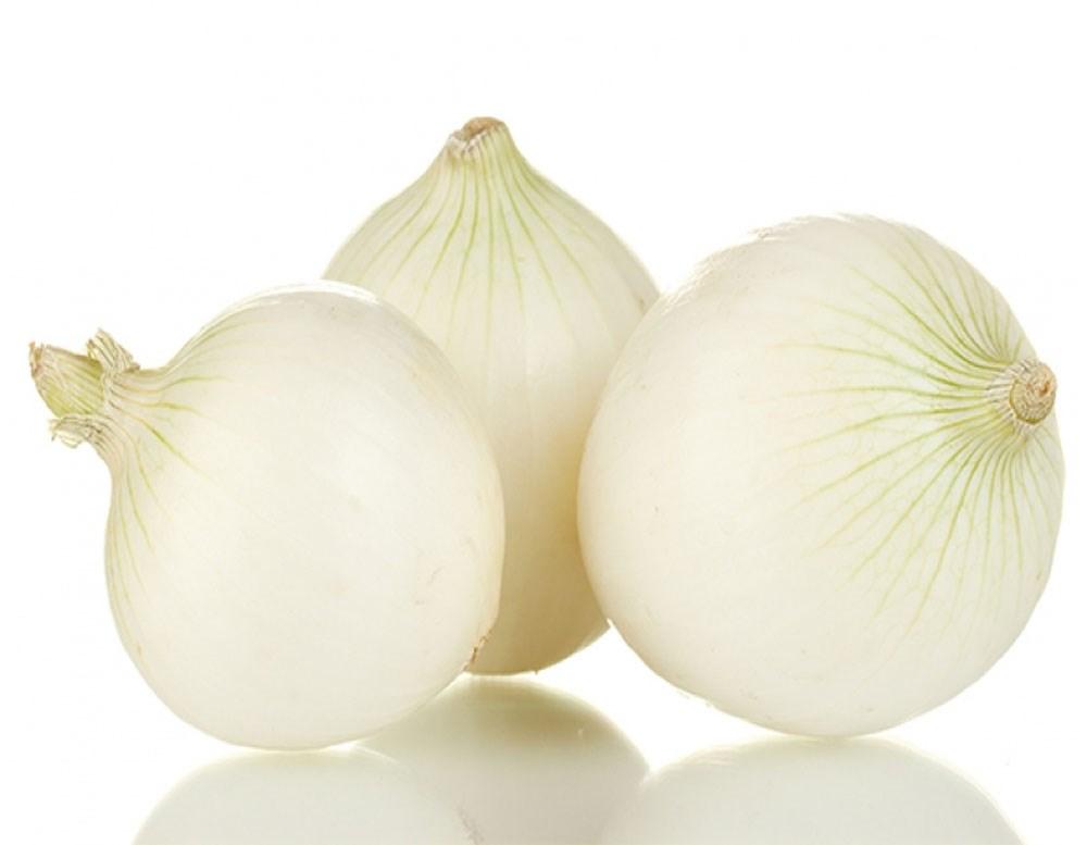 Resultado de imagen de cebolla