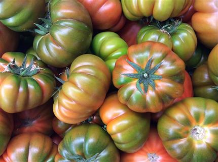 Vásároljon Rummed Muchamiel Tomatot online  A Sarga gyümölcse